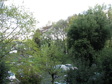 2008_0419_001s