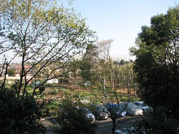 2009_0410_0001s
